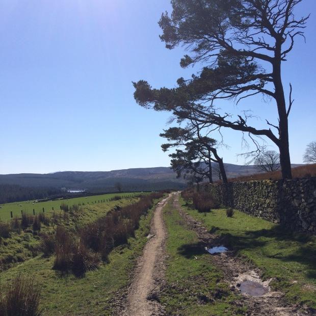 Llyn Alwen, Wales