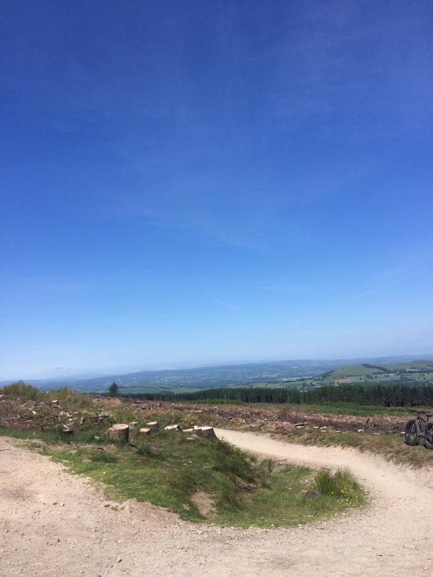 Llandegla Forest, North Wales
